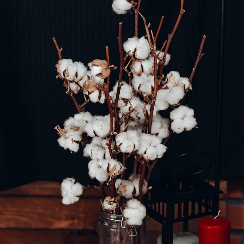 Fleur de coton - Parfum pour bougies