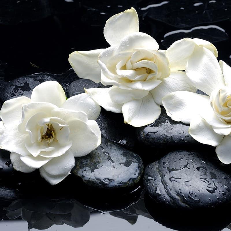 Gardenia - Parfum pour bougies