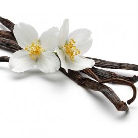 Vanille - Parfum pour bougies